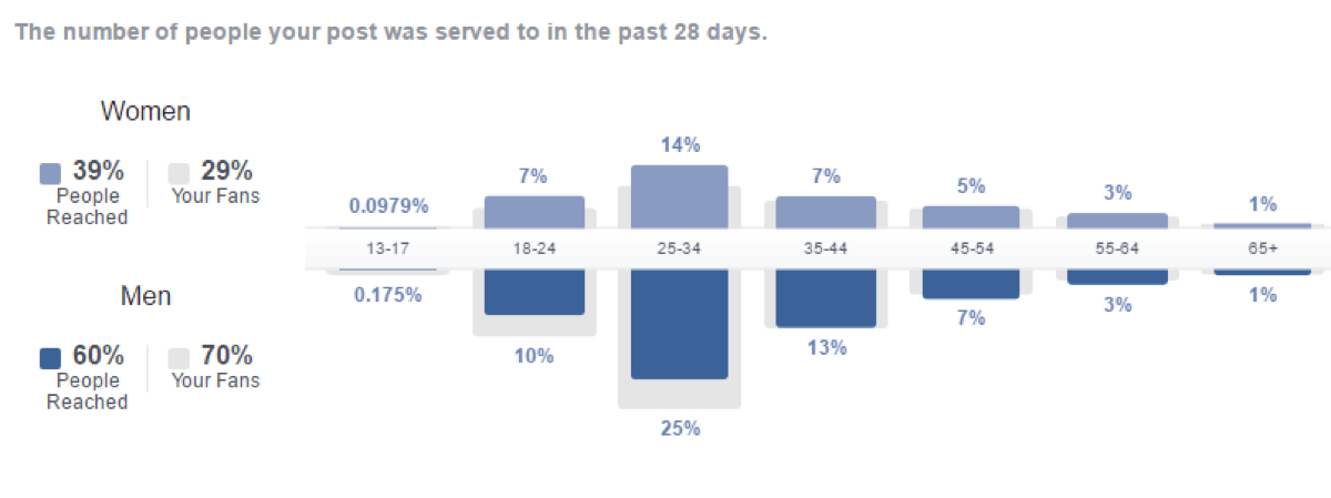 Facebook Insights data for People and Demographics