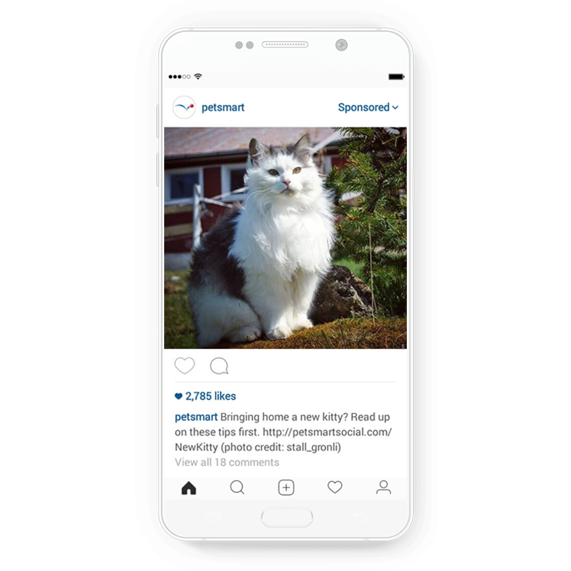 Clever Instagram ad by PetSmart