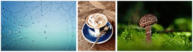 social media graphics pixabay photos