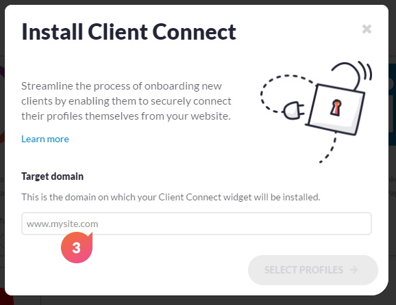 client-connect-widget-domain