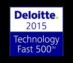 Deloitte 500