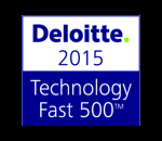 Deloitte 2015