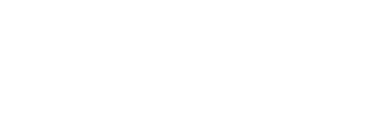 Voima_Logo_White